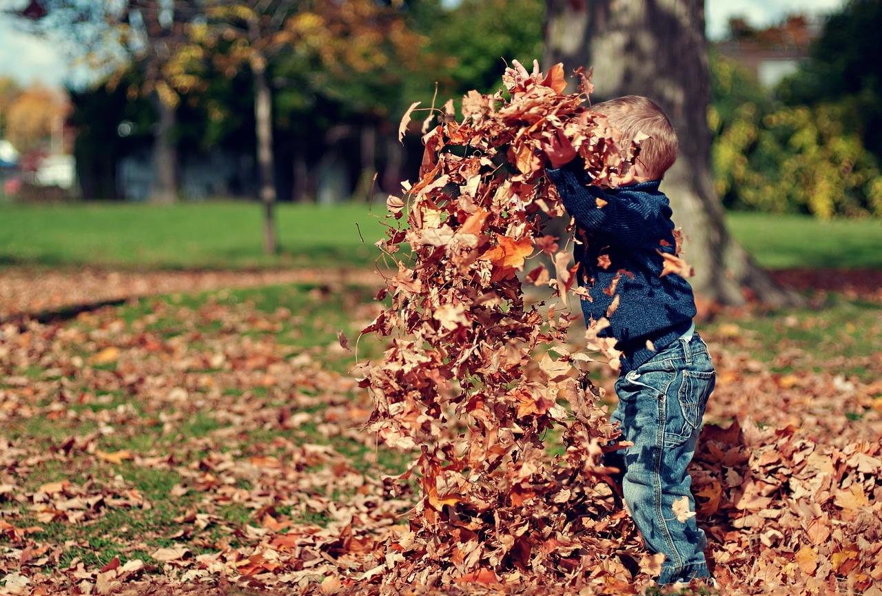 natura da vivere, bambino che gioca con le foglie