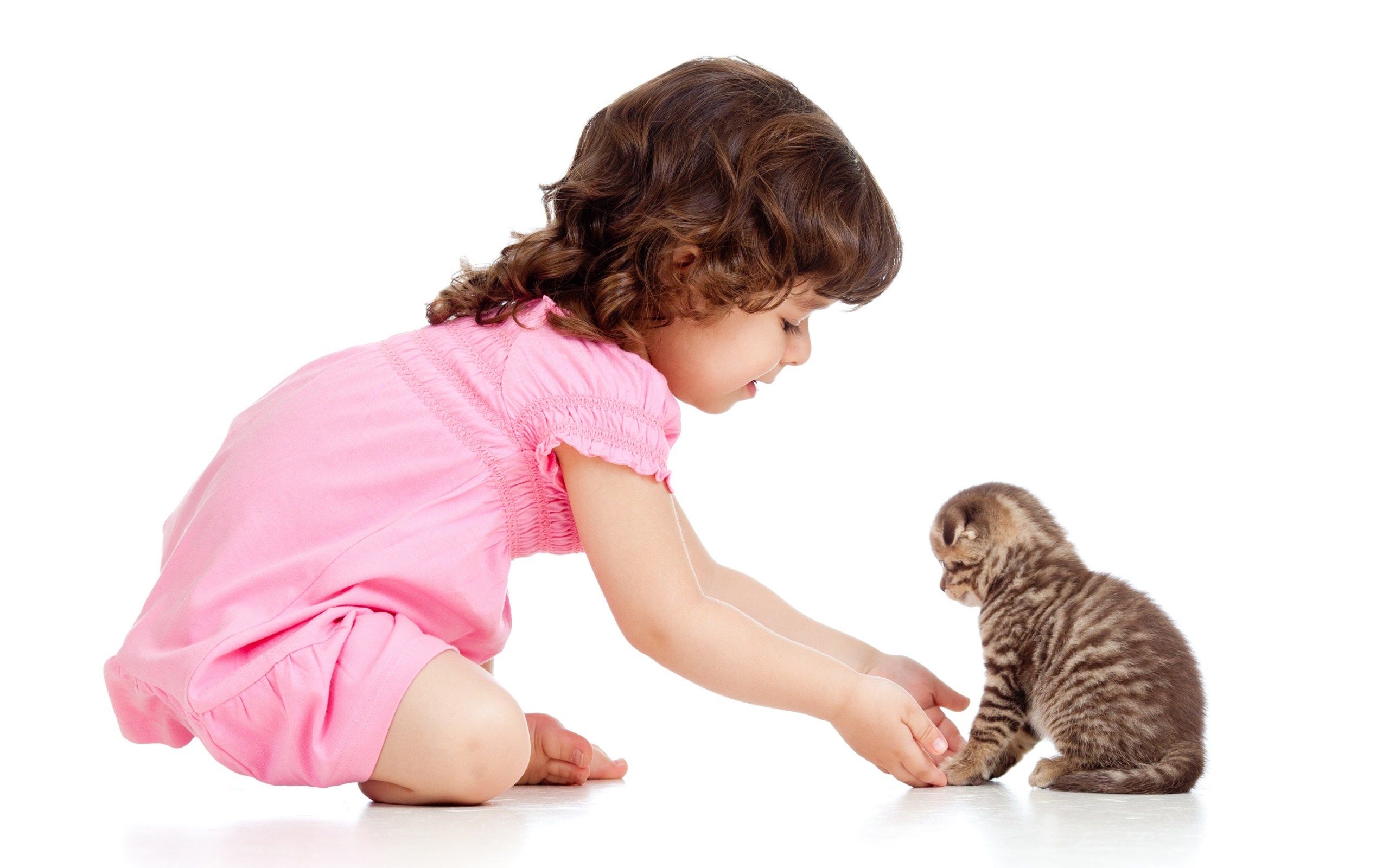bambina e gatto, regole per una corretta interazione